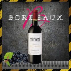 Vin Rouge Bordeaux Supérieur 75cl